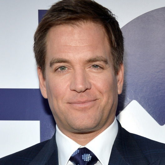 Michael weatherly, Married, Affair, Net worth, Children, Wife, Bio, Age, Height